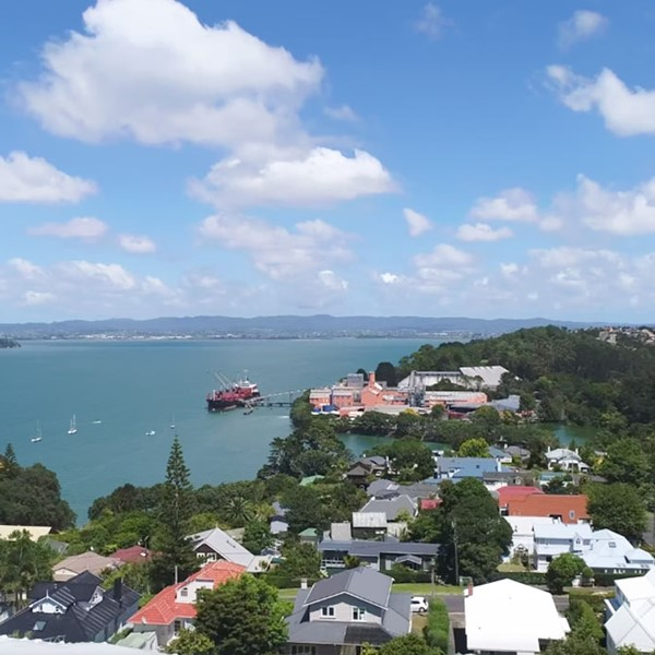 View of Auckland suburb from above
