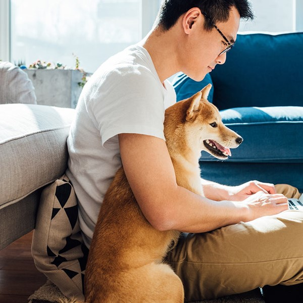 Guy wearing white tshirt and chinos leaning against couch on the floor, with dog using laptop