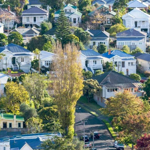 Houses in Auckland suburb