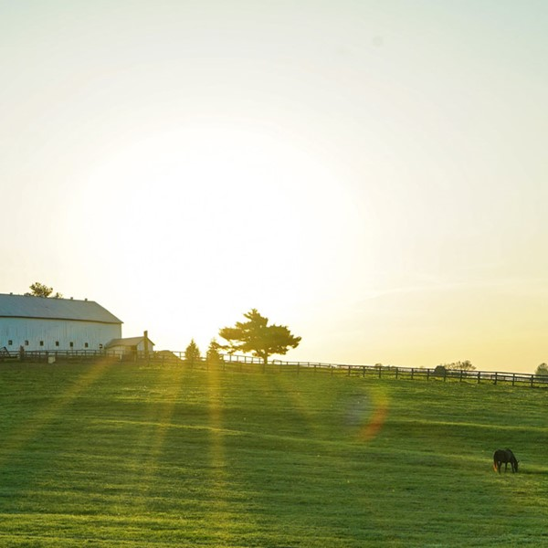 House on a green field with sun rise behind
