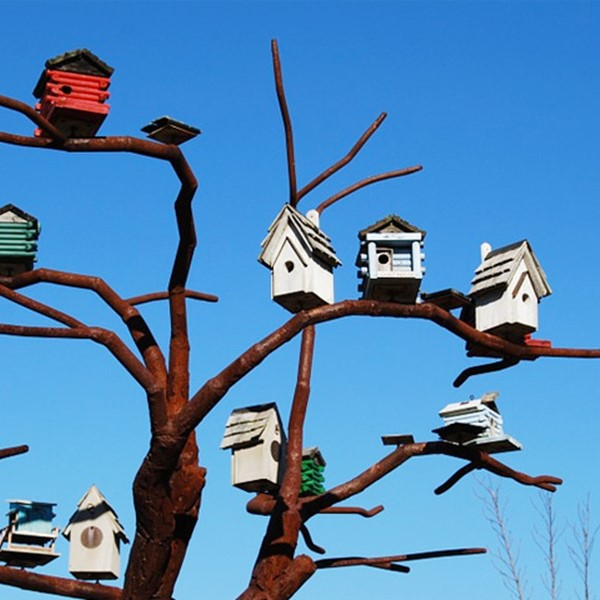 Birdhouses on branches of a tree