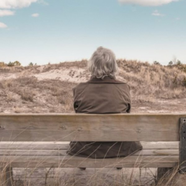 Older person sitting on a bench looking out over the landscape