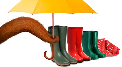 Squirrel tail, gumboots and umbrella