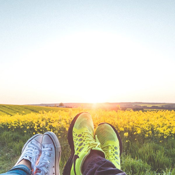 Yellow field landscape, converse shoes in foreground