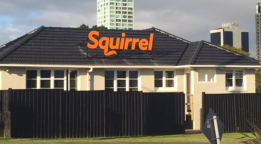 Takapuna Squirrel office