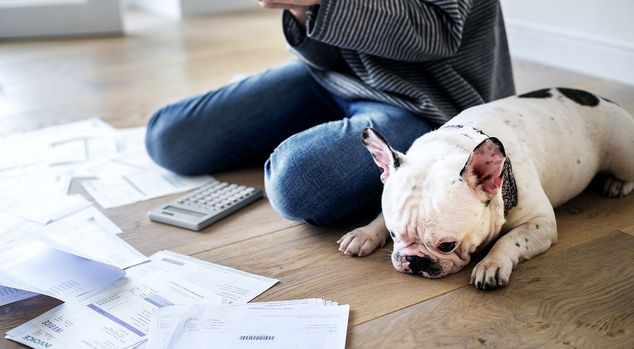 Woman and dog sitting on floor with calculator and papers